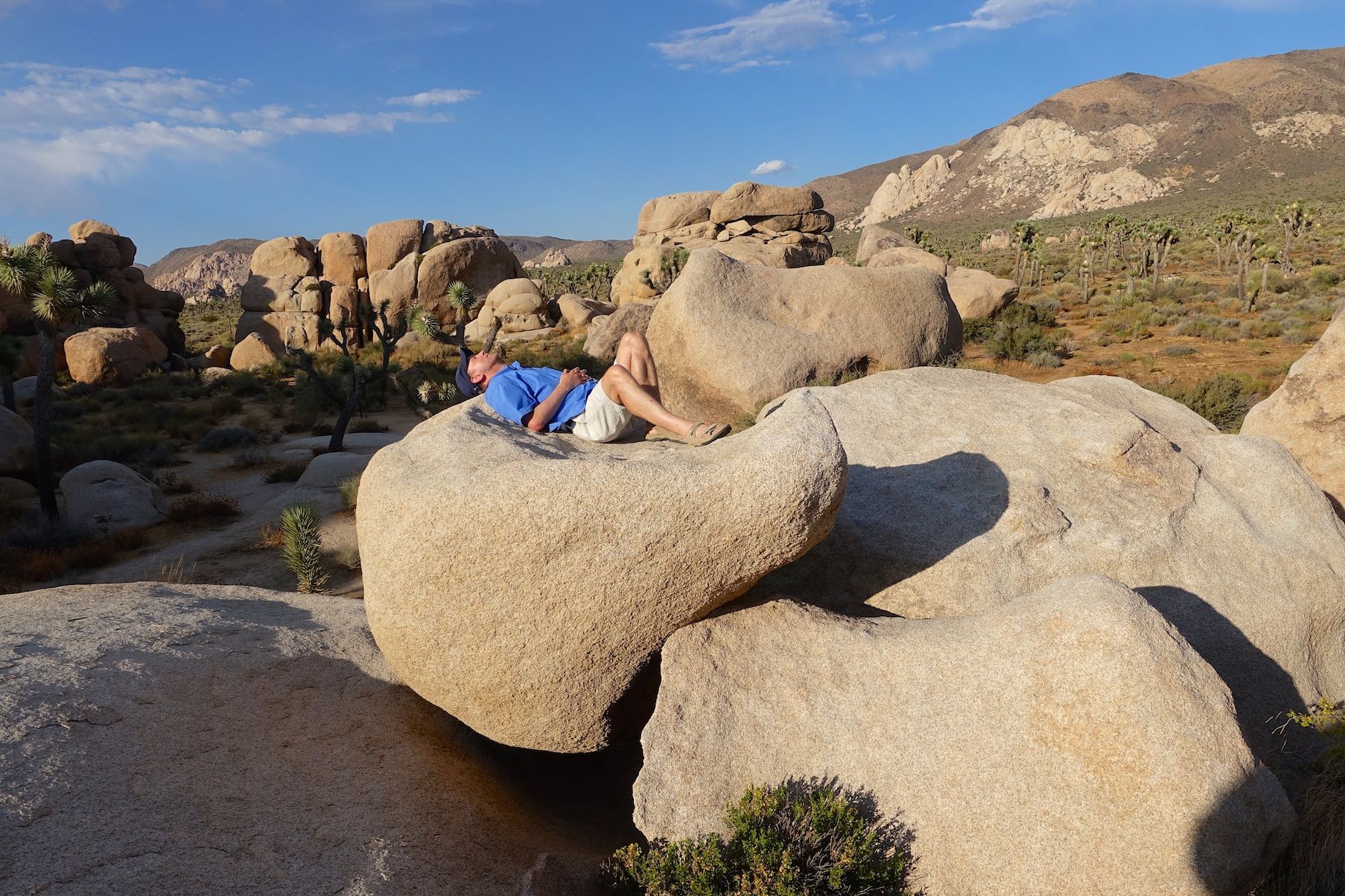 Joshua Tree National Park: Cap Rock Nature Trail