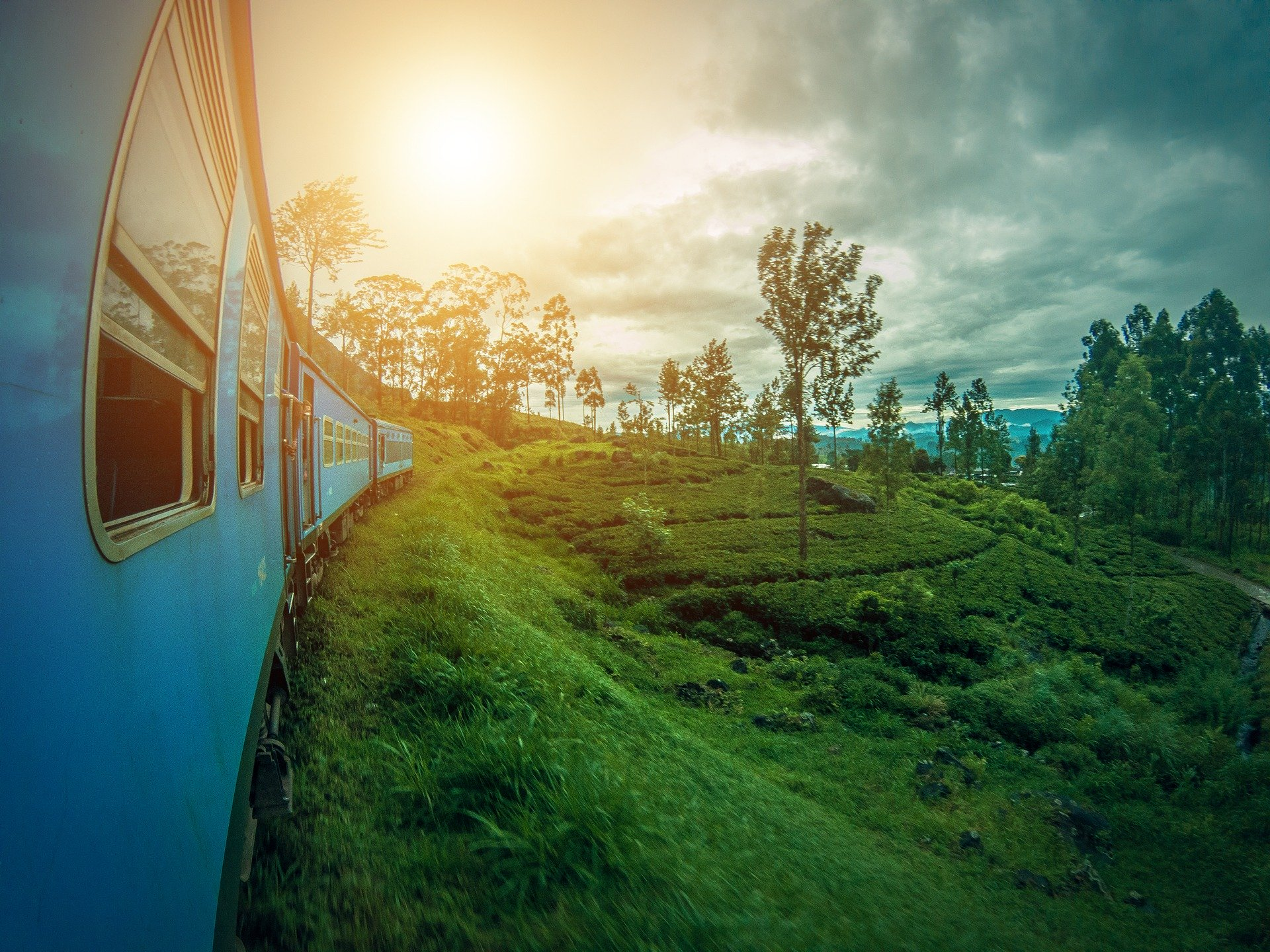 photo credit: amanjahemal (pixaby)