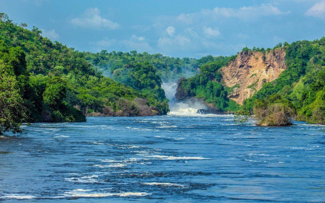 Discover the Best of Murchison Falls National Park with our Mini Guide
